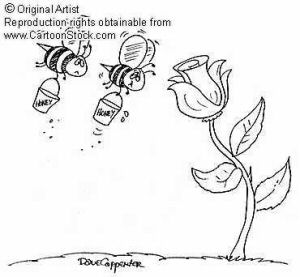 cartoon honey bees
